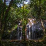 金引の滝360度パノラマカメラ