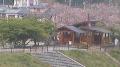停止中:伊豆高原桜ライブカメラと雨雲レーダー/静岡県伊東市