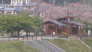 河津川にかかる豊泉橋ライブカメラと雨雲レーダー/静岡県賀茂郡