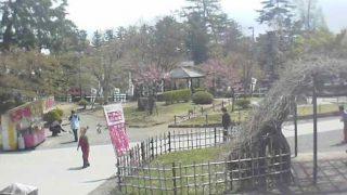 上杉神社ライブカメラと雨雲レーダー/山形県米沢市