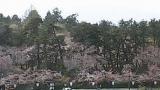 弘前公園(東門前)ライブカメラと雨雲レーダー/青森県弘前市