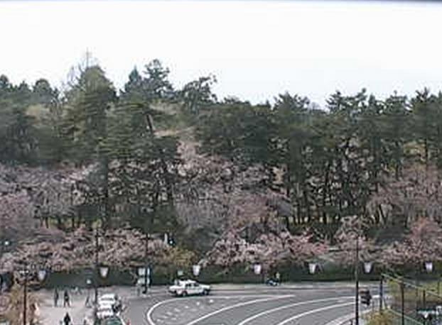 弘前公園(東門前)ライブカメラ
