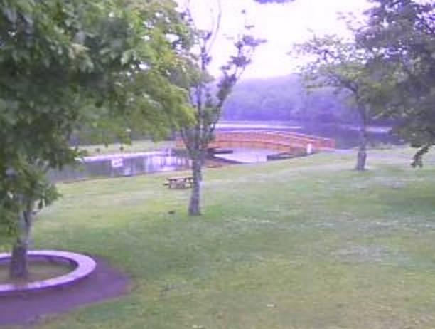緑ヶ丘公園・金太郎の池ライブカメラ