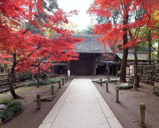 平林寺の360度パノラマカメラ