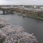五条川ライブカメラ