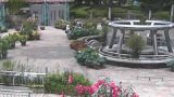 水生植物公園みずの森ライブカメラ(3ヶ所)と雨雲レーダー/滋賀県草津市