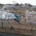 二ツ沼総合公園南駐車場付近ライブカメラ