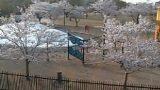 二ツ沼総合公園南駐車場付近ライブカメラと雨雲レーダー/福島県広野町