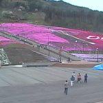ジュピアランドひらたの芝桜ライブカメラ