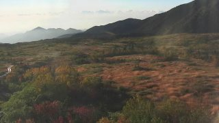 弥陀ヶ原ライブカメラと雨雲レーダー/富山県立山町