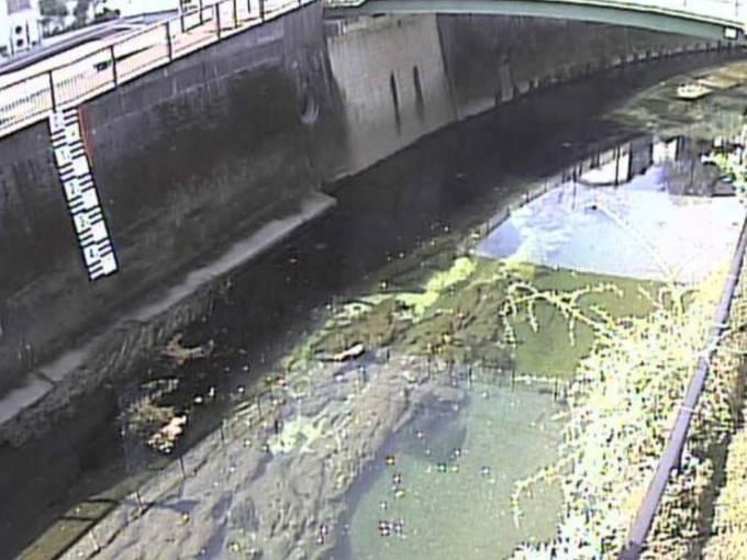 石神井川のライブカメラ一覧