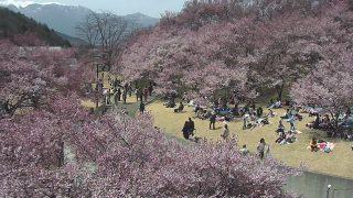高遠城址公園や赤そばの里などライブカメラ(12ヶ所)と雨雲レーダー/長野県伊那谷