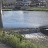 紫川・黒川・笹尾川ライブカメラ(6ヶ所)