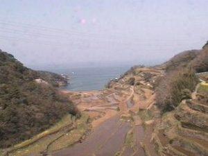 佐賀県(玄海町):浜野浦の棚田のWebカメラ