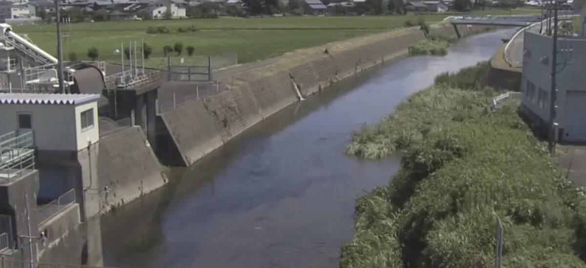 九頭竜川水系日野川のライブカメラ一覧・雨雲レーダー・天気予報