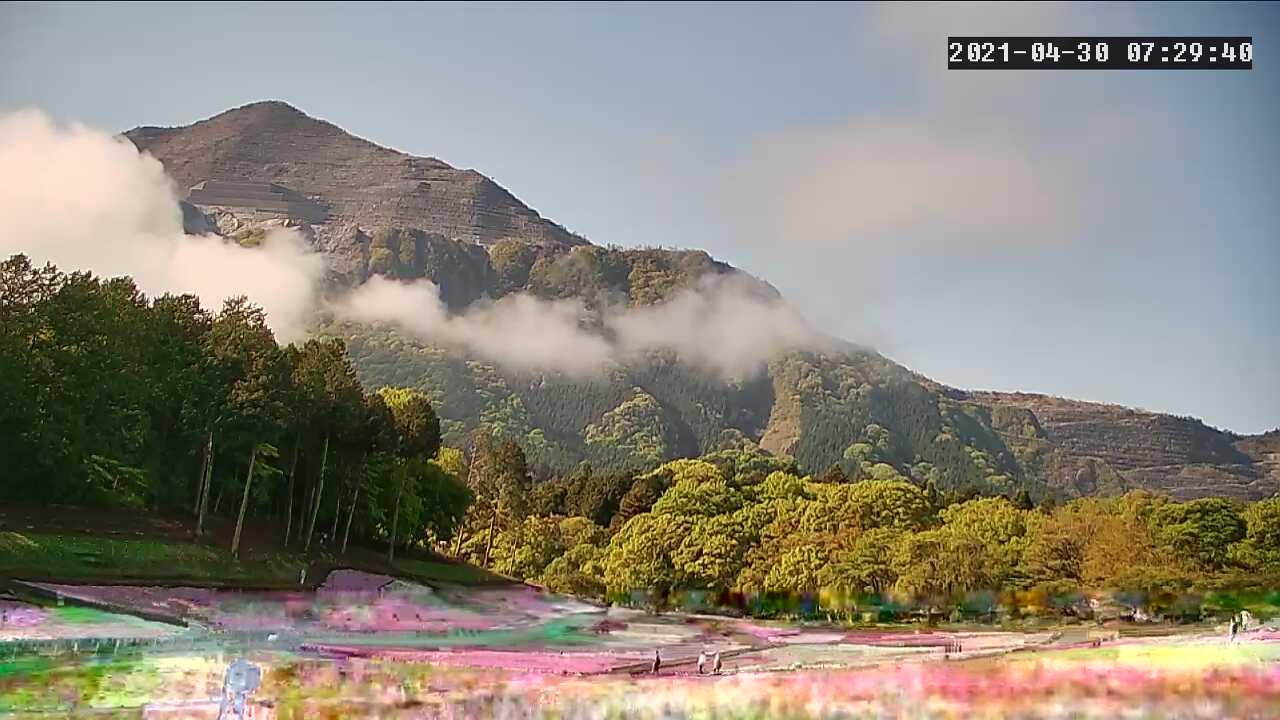 秩父羊山公園 芝桜の丘・武甲山 ライブカメラと雨雲レーダー/埼玉県秩父市