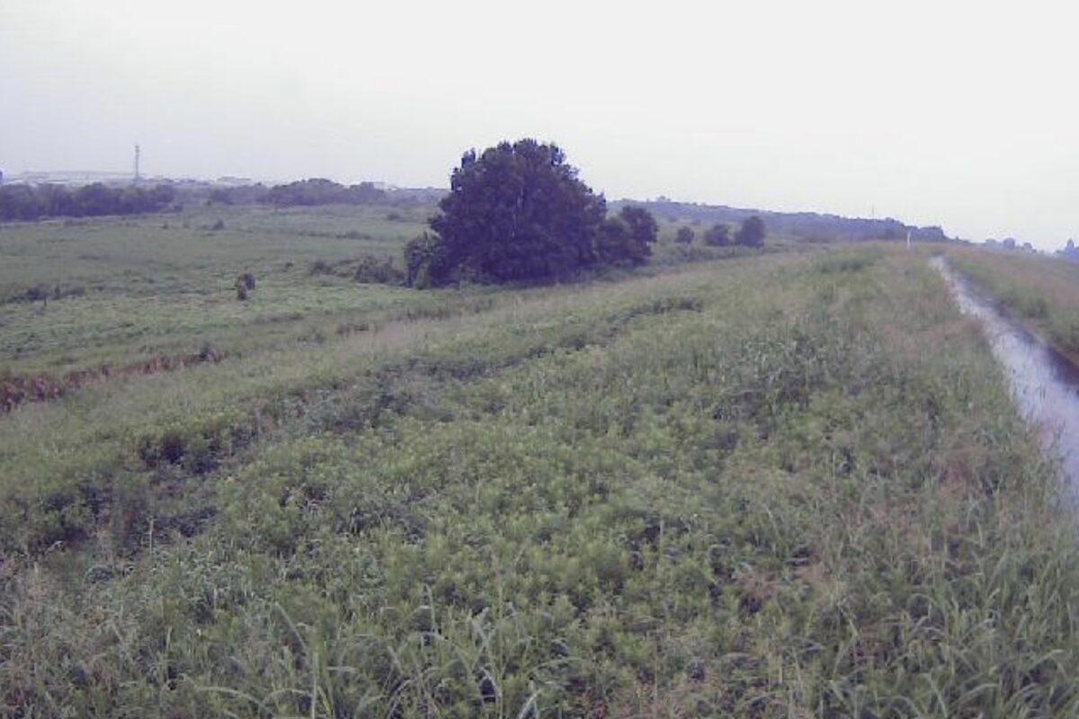 入間川・出丸中郷5.3kpライブカメラと雨雲レーダー/埼玉県川島町