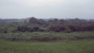 入間川・鹿飼5.8kpライブカメラと雨雲レーダー/埼玉県川越市鹿飼