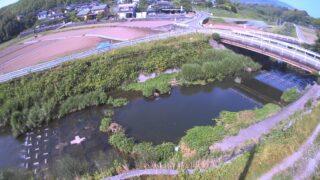 井芹川 ライブカメラ(西里)と雨雲レーダー/熊本県熊本市