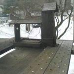 天然温泉宿「安暖庭」ライブカメラ