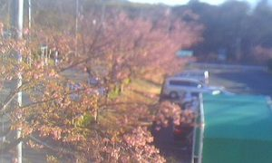 停止中:伊豆急行本社ライブカメラと雨雲レーダー/静岡県伊東市