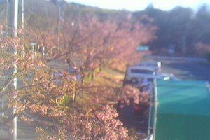 静岡県(伊東市):伊豆急行本社のWebカメラ