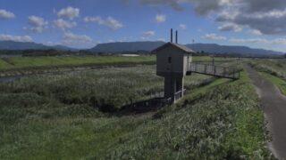肝属川・流合橋ライブカメラと雨雲レーダー/鹿児島県鹿屋市吾平町