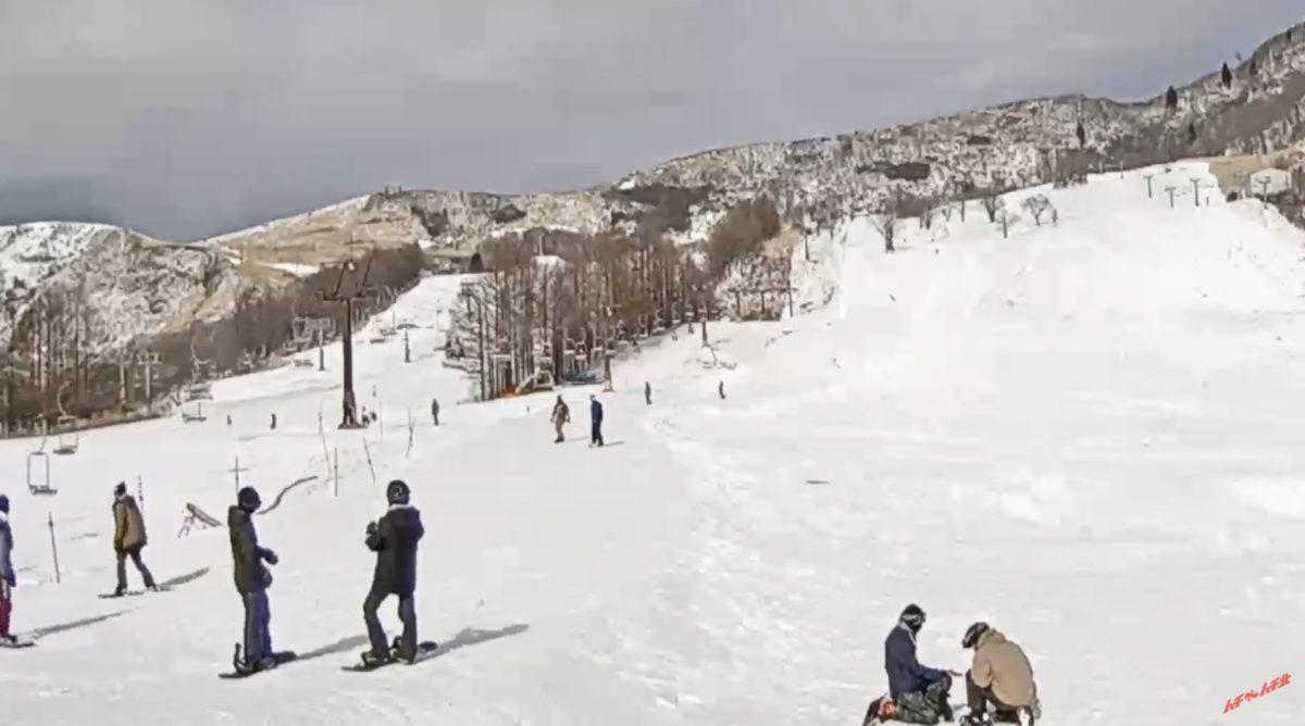 ハチ高原スキー場・ハチ北スキー場 ライブカメラと雨雲レーダー/兵庫県養父市