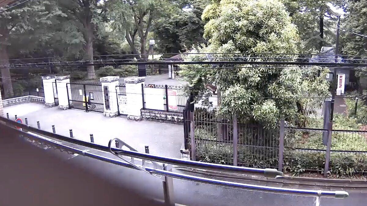 新宿御苑 ライブカメラと雨雲レーダー/東京都新宿区