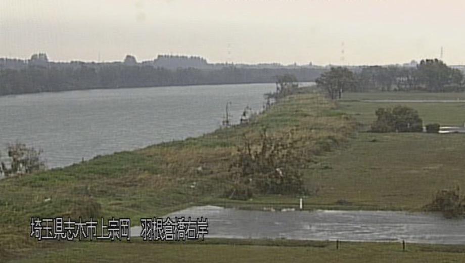 荒川・羽根倉橋 ライブカメラと雨雲レーダー/埼玉県志木市