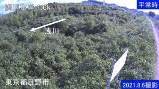 浅川・左岸1.6kライブカメラと雨雲レーダー/東京都日野市