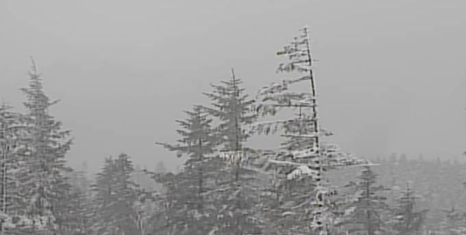 浅間山・草津白根山ライブカメラ(3ヶ所)と雨雲レーダー/群馬県富岡市