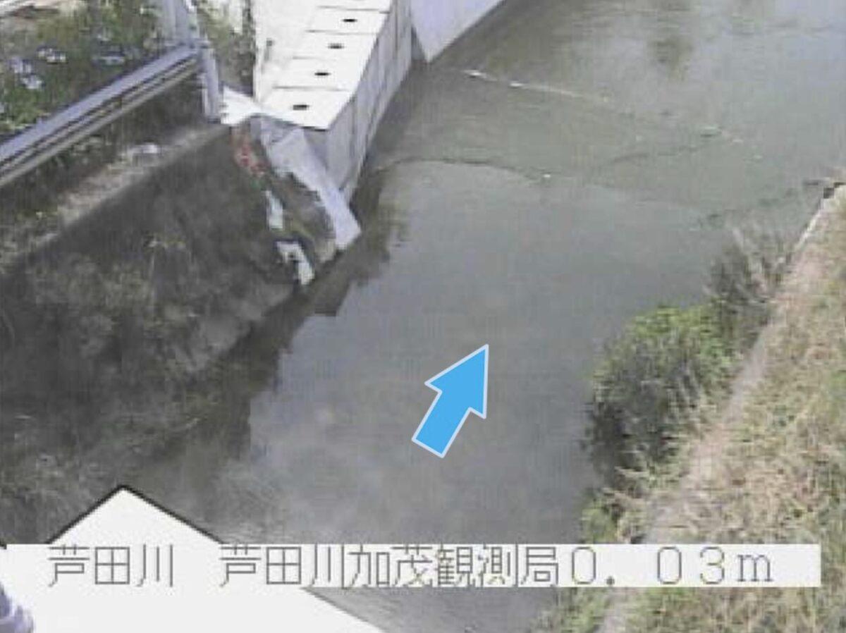 芦田川・加茂ライブカメラと雨雲レーダー/大阪府高石市加茂