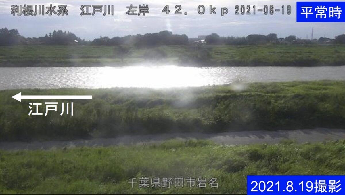 江戸川・岩名 左岸42.0kライブカメラと雨雲レーダー/千葉県野田市岩名