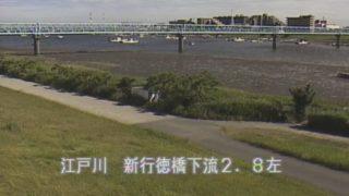 江戸川 ライブカメラ(新行徳橋下流)と雨雲レーダー/千葉県市川市