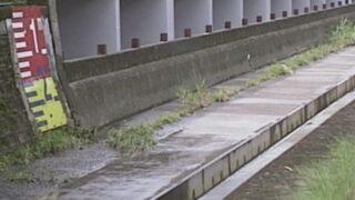 江古田川・北江古田ライブカメラと雨雲レーダー/東京都中野区江古田