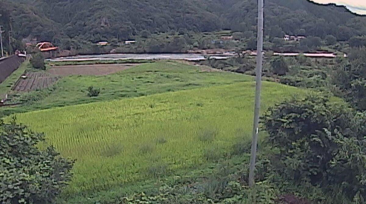 江の川・都賀行ライブカメラと雨雲レーダー/島根県美郷町