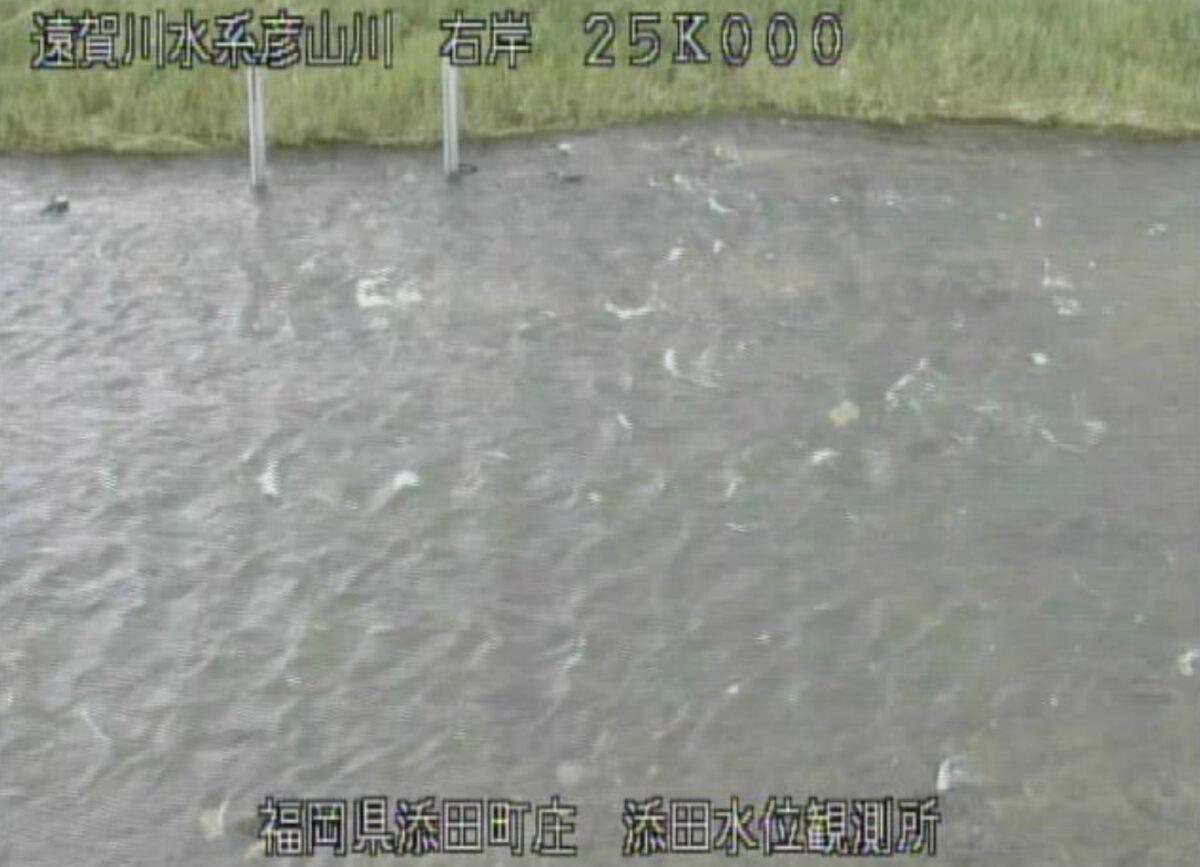 彦山川・添田水位観測所ライブカメラと雨雲レーダー/福岡県添田町