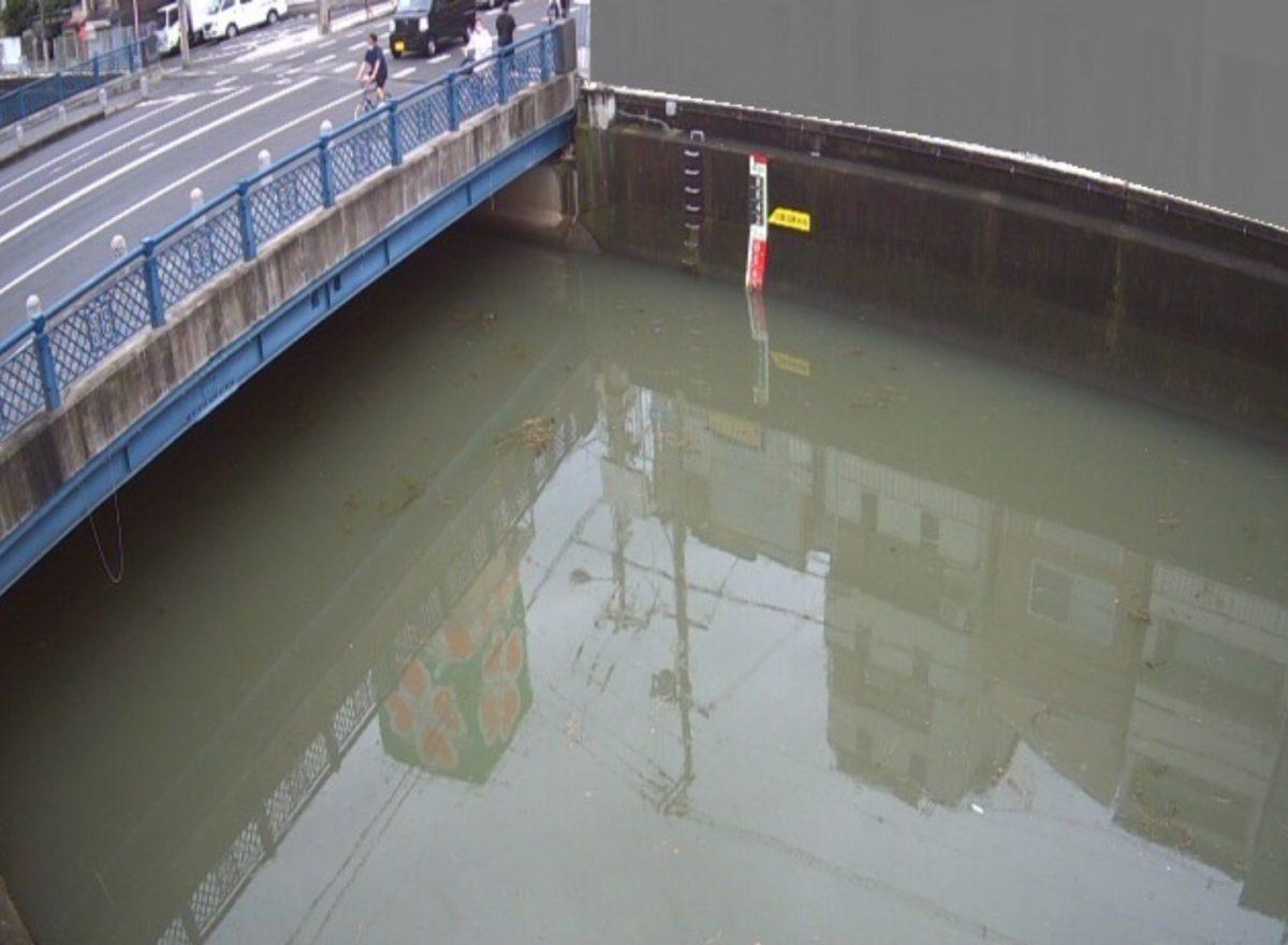 平野川 ライブカメラ(剣橋)と雨雲レーダー/大阪府大阪市