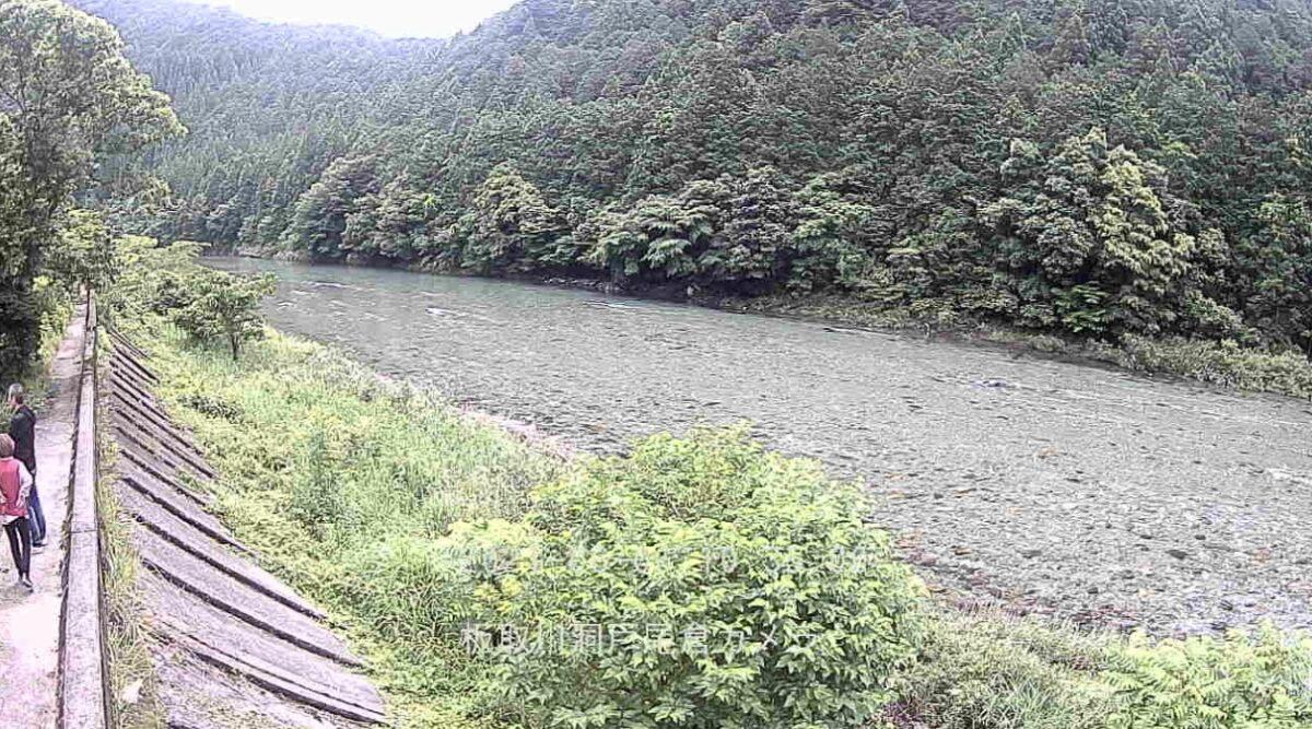 板取川・洞戸尾倉 ライブカメラと雨雲レーダー/岐阜県関市