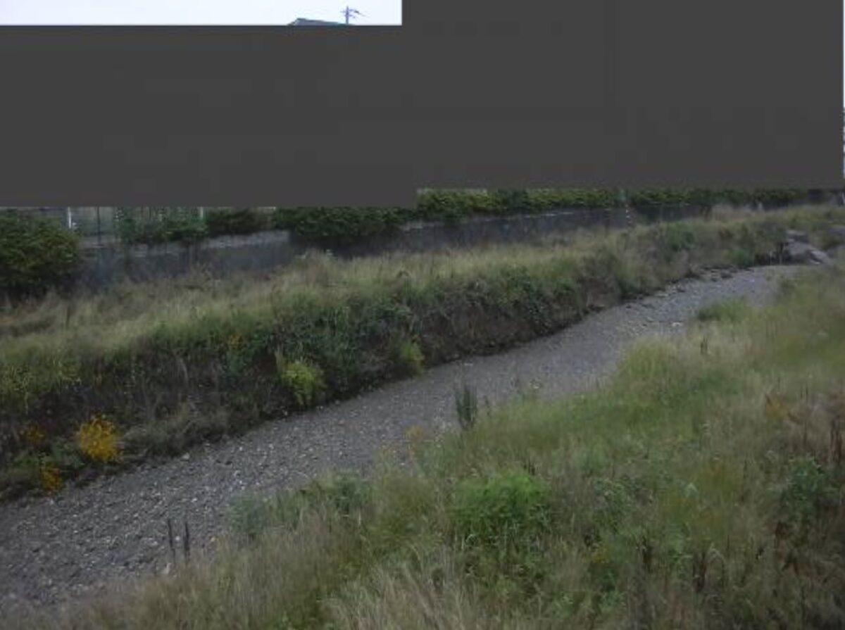 空堀川・丸山橋ライブカメラと雨雲レーダー/東京都東村山市栄町