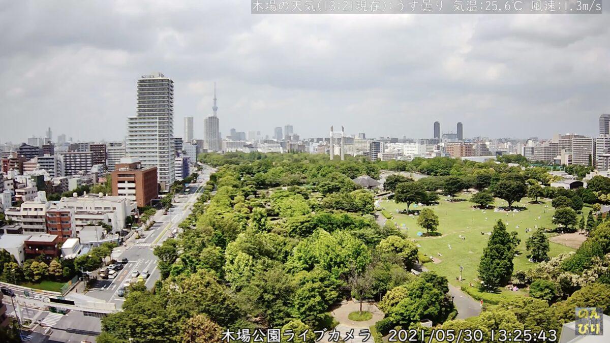 木場公園ライブカメラ ライブカメラと雨雲レーダー/東京都江東区