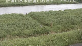肝属川・高良橋ライブカメラと雨雲レーダー/鹿児島県肝属郡肝付町