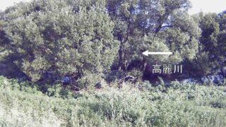 高麗川・新ヶ谷 左岸0.2kpライブカメラと雨雲レーダー/埼玉県坂戸市新ヶ谷