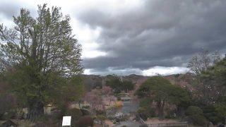 四季の里 緑水苑ライブカメラと雨雲レーダー/福島県郡山市