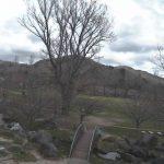 桜の開花時期限定:石筵ふれあい牧場ライブカメラ