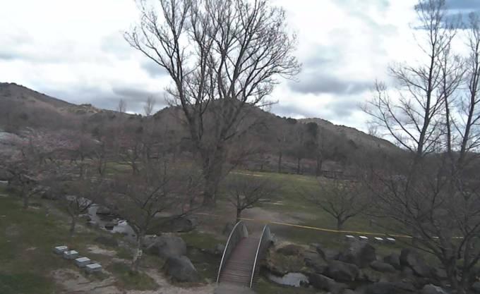 桜の開花時期限定:石筵ふれあい牧場ライブカメラと雨雲レーダー/福島県郡山市