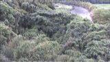 串良川・霧島大橋ライブカメラと雨雲レーダー/鹿児島県鹿屋市串良町