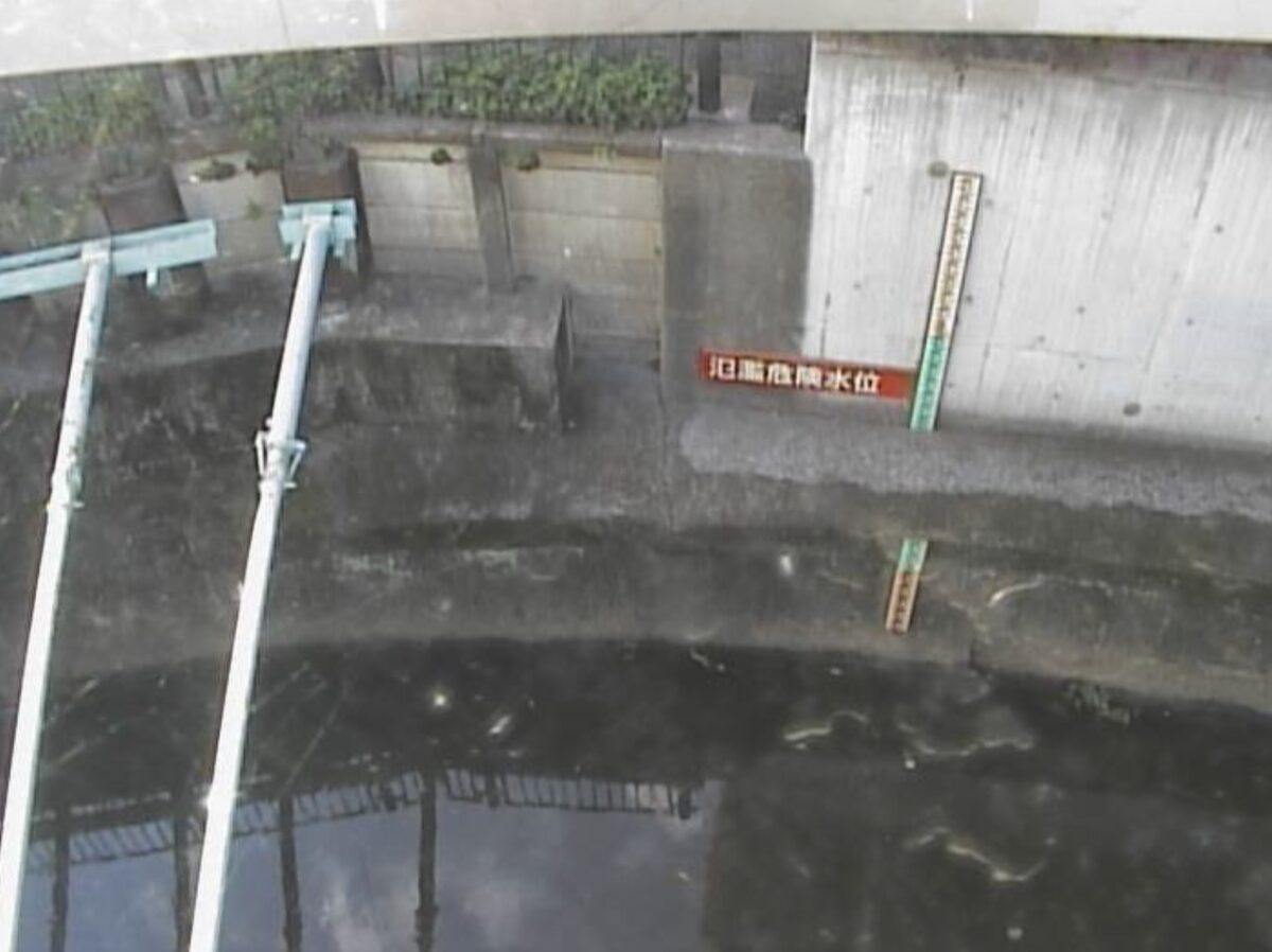 丸子川・滝ノ橋ライブカメラと雨雲レーダー/東京都世田谷区野毛