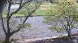 美甘宿場桜・新庄川 ライブカメラと雨雲レーダー/岡山県真庭市